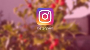 Instagram api changes